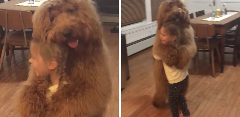 Video of little girl dancing with her dog is all your need to see to smile right now