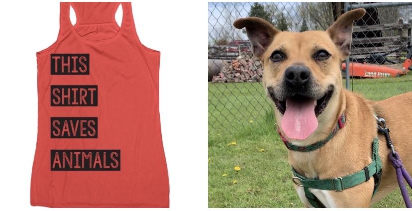 'This Shirt Saves Animals' raising funds for shelter animals at Niagara County SPCA