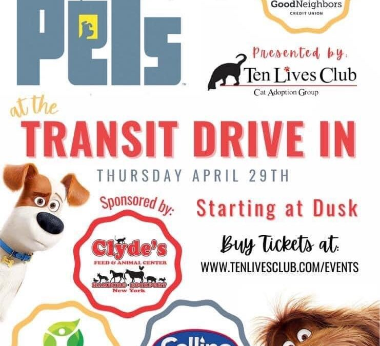 Transit Drive-in showing 'The Secret Life of Pets' to raise funds for Ten Lives Club