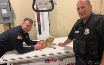 Eden Police save choking puppy, name it 'Lucky'