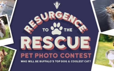 Resurgence searching for Buffalo's top dog & coolest cat to feature on beer can!
